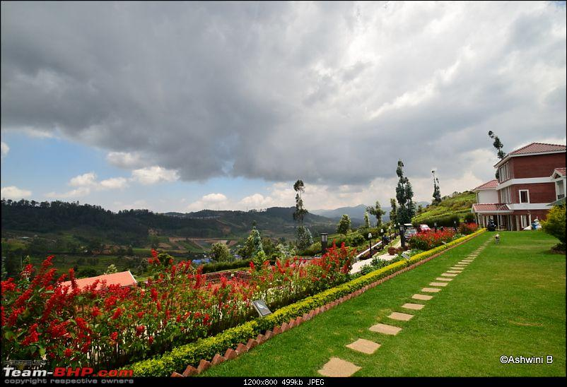 Dwarfing along - Dreaming of the hills (Ooty)-t24.jpg