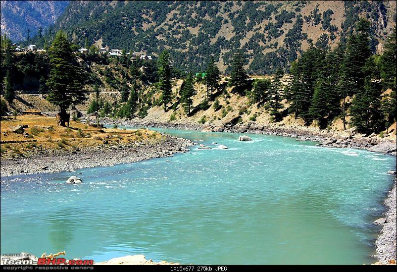 The Great Escape: Cliffhanger Kashmir, Valleys of Himachal, Mughal Road and much more-gulab-4.jpg
