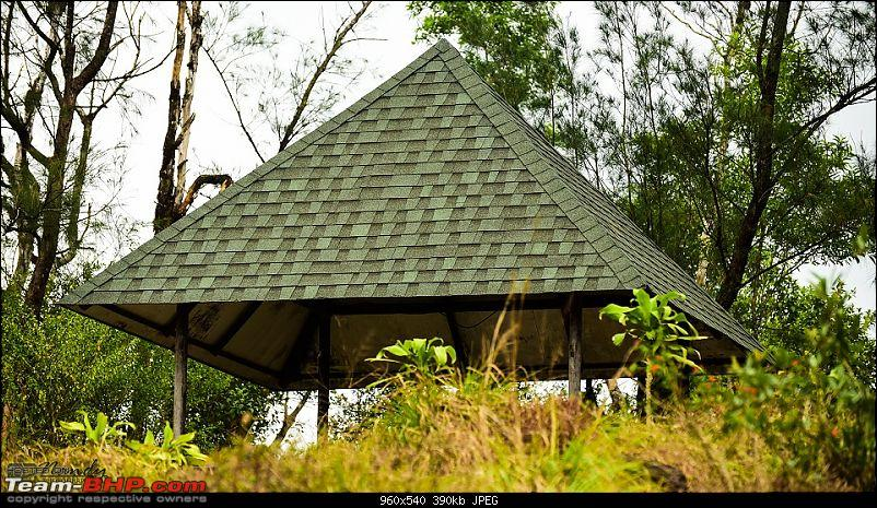 A beautiful beach and an enchanting hill station! Drive to Varkala and Ponmudi-20160409dsc_0559.jpg