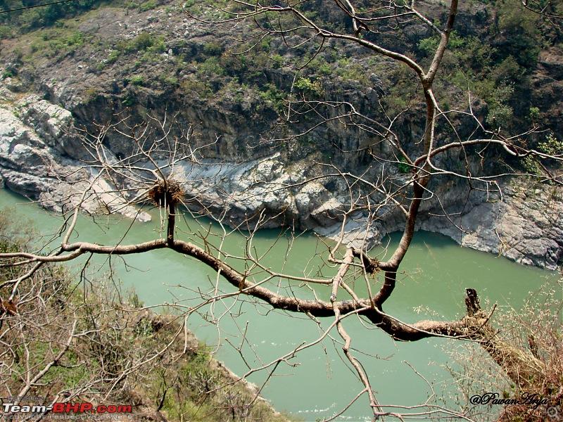 6,000 km Roadtrip: Bangalore to Garhwal Himalayas-dsc00409.jpg