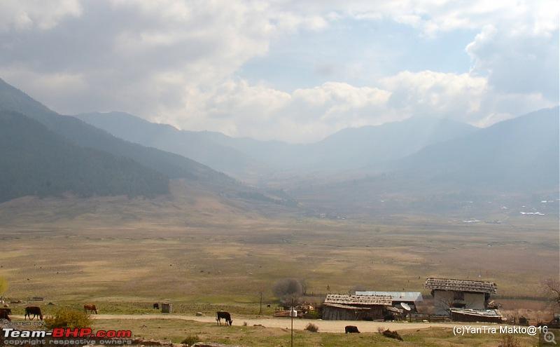 Alto'ed: Blessed in Bhutan-dsc_2213.jpg