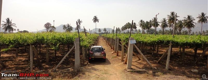 Hummer�s Travel: Jyotirlinga Darshana at Srisailam-dsc04117.jpg
