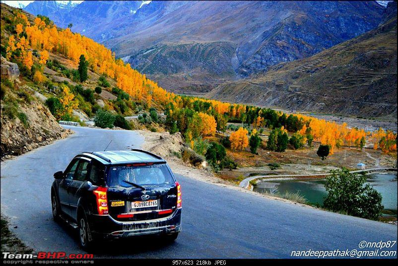 The Great Escape: Cliffhanger Kashmir, Valleys of Himachal, Mughal Road and much more-near-gramphoo-1.jpg