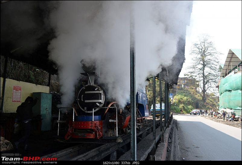 Trip to the Queen of Hills - Darjeeling in a Fluidic Verna-dsc_0502.jpg