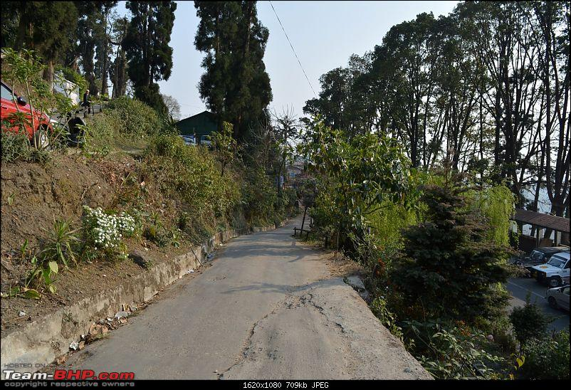 Trip to the Queen of Hills - Darjeeling in a Fluidic Verna-dsc_0693.jpg