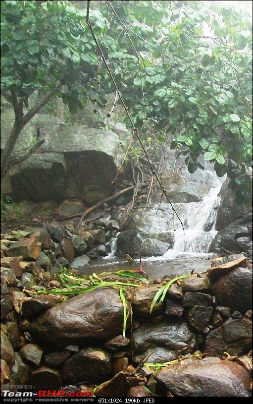 Tall trees, majestic hills, deep woods and enchantment: A sojourn in Yercaud-stream.jpg