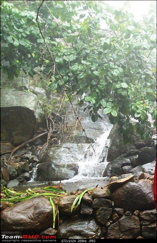 Tall trees, majestic hills, deep woods and enchantment: A sojourn in Yercaud-stream1.jpg