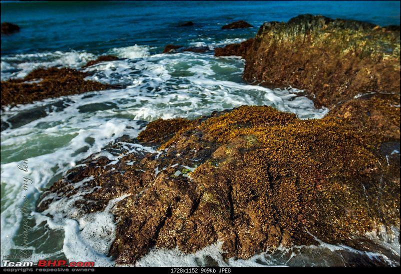My pick of the Top Beaches in South Goa-pollem-17.jpg