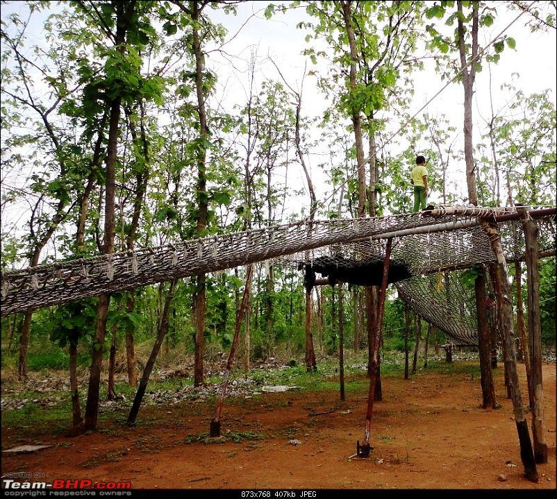 Hummer�s Travels: Tranquillity in the midst of a jungle (Anandadhama Retreat)-24.jpg