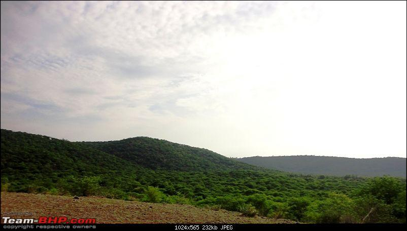 Hummer�s Travels: Tranquillity in the midst of a jungle (Anandadhama Retreat)-29a.jpg