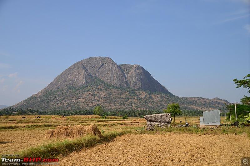 Exploring the Western Ghats in Kerala & Tamil Nadu-dsc_5685.jpg
