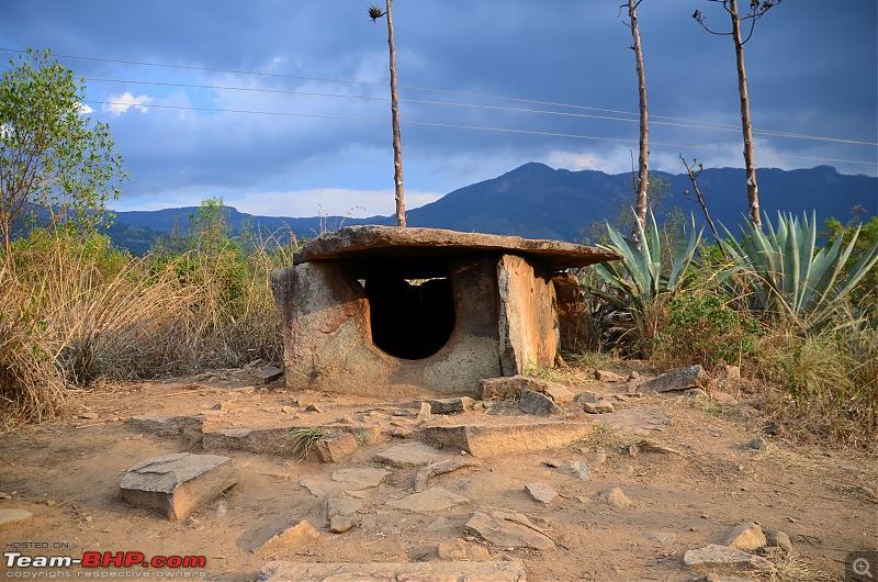 Exploring the Western Ghats in Kerala & Tamil Nadu-dsc_5747.jpg