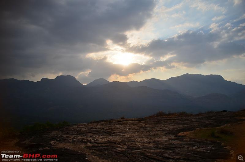 Exploring the Western Ghats in Kerala & Tamil Nadu-dsc_5750.jpg