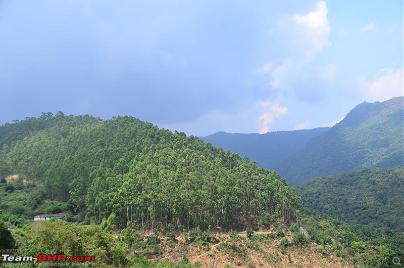 Exploring the Western Ghats in Kerala & Tamil Nadu-dsc_6217.jpg