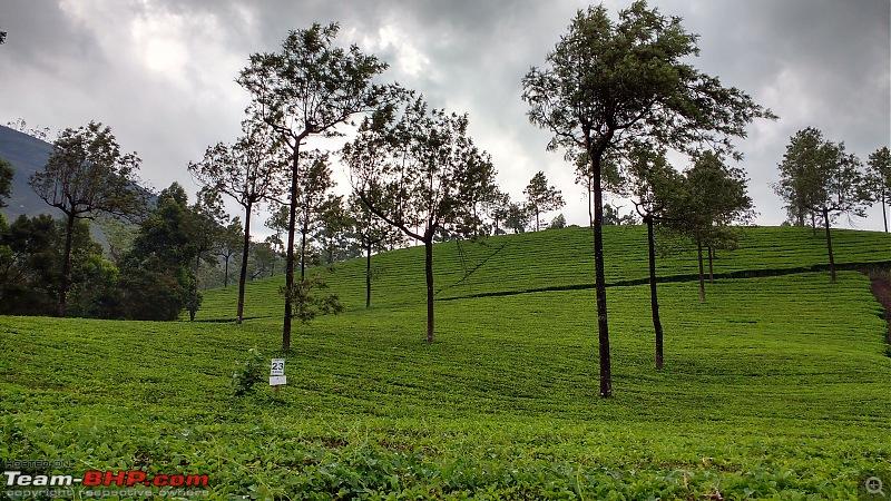 Exploring the Western Ghats in Kerala & Tamil Nadu-img_20160511_140109126_hdr.jpg