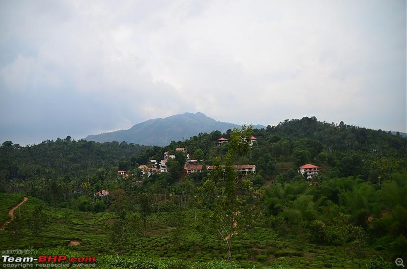 Exploring the Western Ghats in Kerala & Tamil Nadu-dsc_6769.jpg