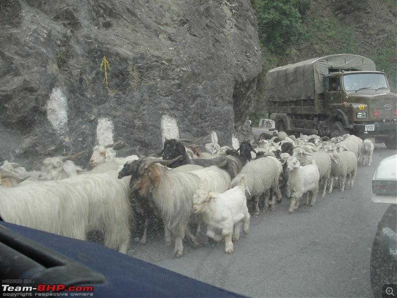 Uttarakhand calling: Trip to Yamunotri & Gangotri in a hatchback-1-30.jpg