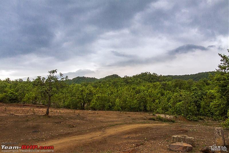 Monsoon weekend drive to Dalma Hills in a Ford Figo-img_0682.jpg