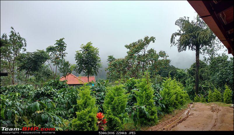 Coffee in Coorg-brooke-stone-villas-3min.jpg