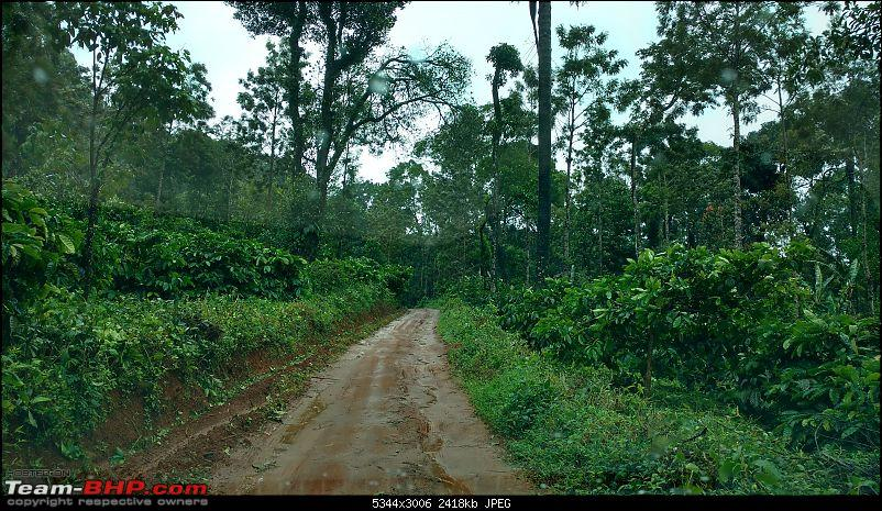 Coffee in Coorg-way-booke-stone-villas-3min.jpg