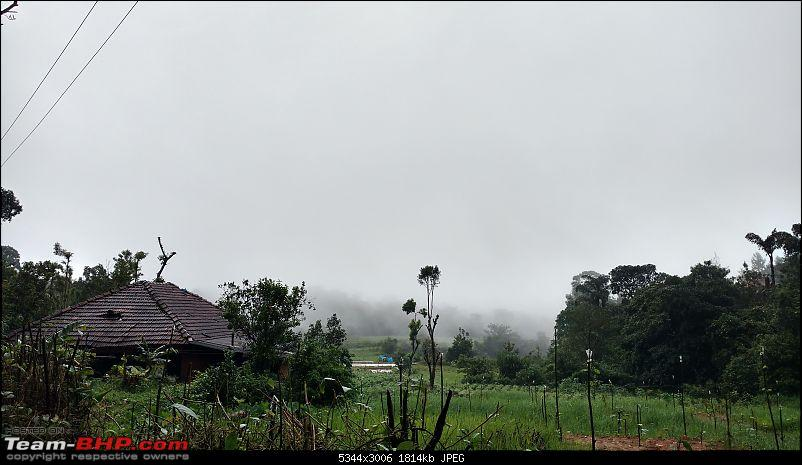 Coffee in Coorg-way-booke-stone-villas-4min.jpg