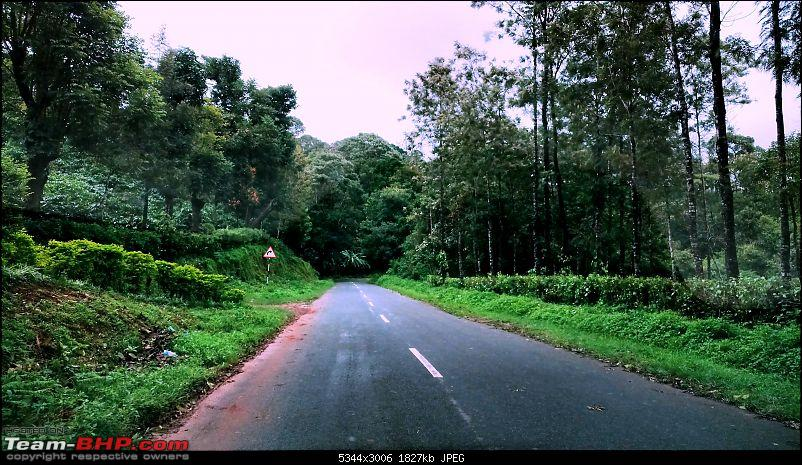 Coffee in Coorg-way-siddapuramin.jpg