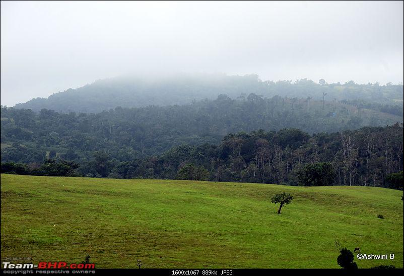 Red Dwarf's monsoon diary - Exploring new roads of rural Karnataka in a TUV300-m8.jpg