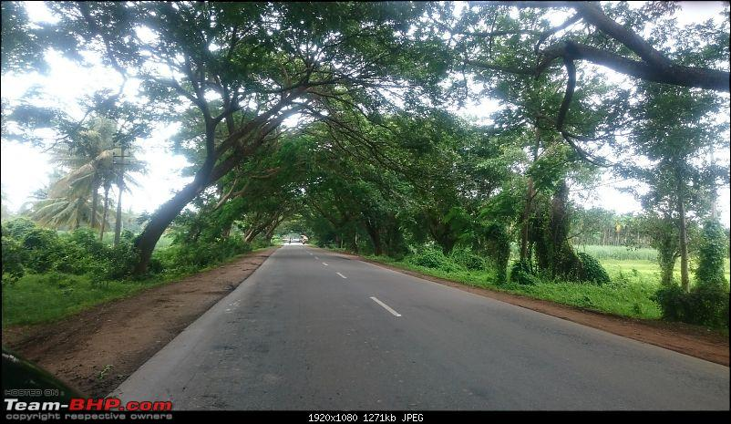 My monsoon solo: 2000 km & 7 days of wandering through Konkan, Goa and Western Karnataka-dsc_0207_3.jpg