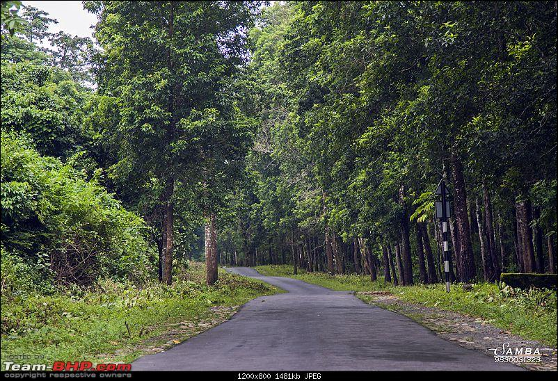 West Bengal - A treasure for tourists-img_1169.jpg