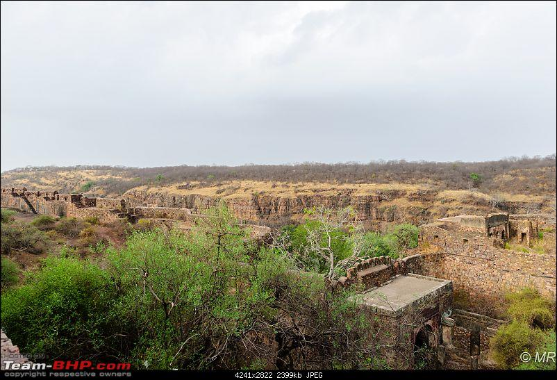 The Gods have been kind: Ranthambore National Park-battle-field1.jpg