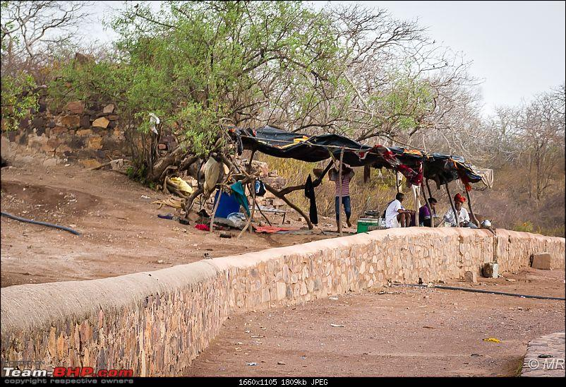 The Gods have been kind: Ranthambore National Park-tea-stall1.jpg