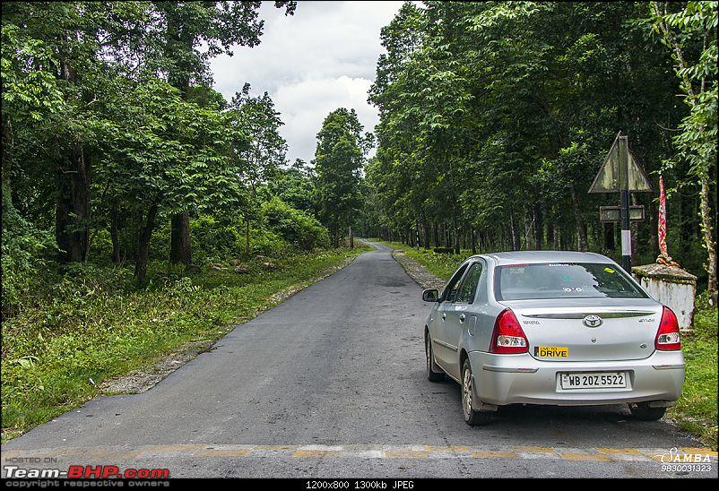 Ecstatic Bhutan and lush green Dooars in a Toyota Etios-img_1168.jpg