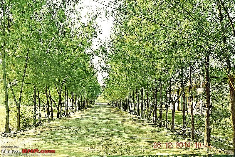 West Bengal - A treasure for tourists-dsc_1775ed-copy.jpg