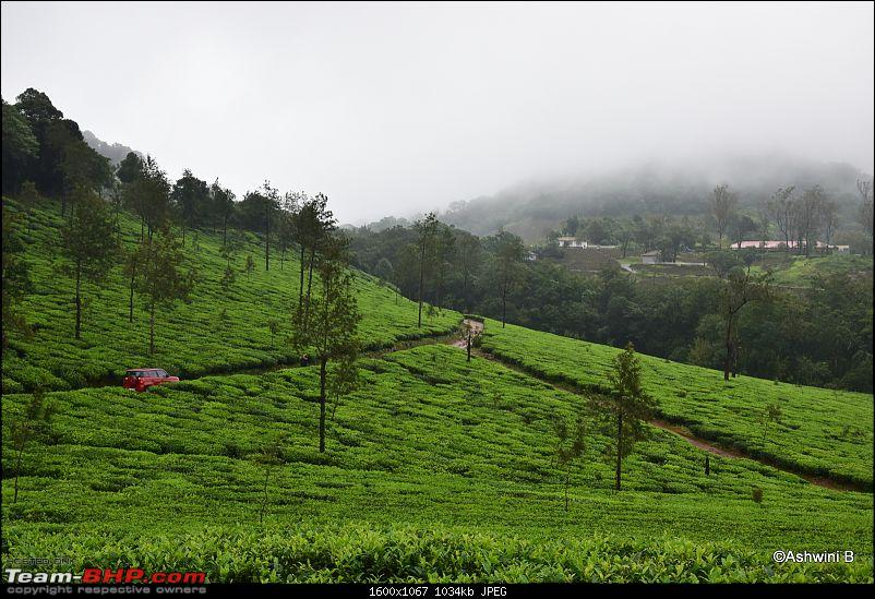 Red TUV300's monsoon diary - Magical Kadamane-a1_1.jpg