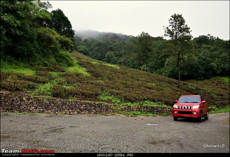 Red TUV300's monsoon diary - Magical Kadamane-a2_8.jpg
