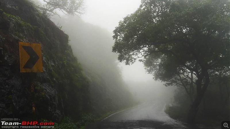 Rain, Fog & Greenery – A Maharashtrian Monsoon Tale!-img_2261.jpg