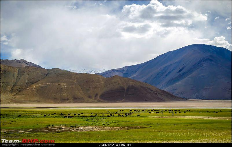 Ladakh: Better Leh'd than never. EDIT: Part 2 on page 3-dsc_7167.jpg