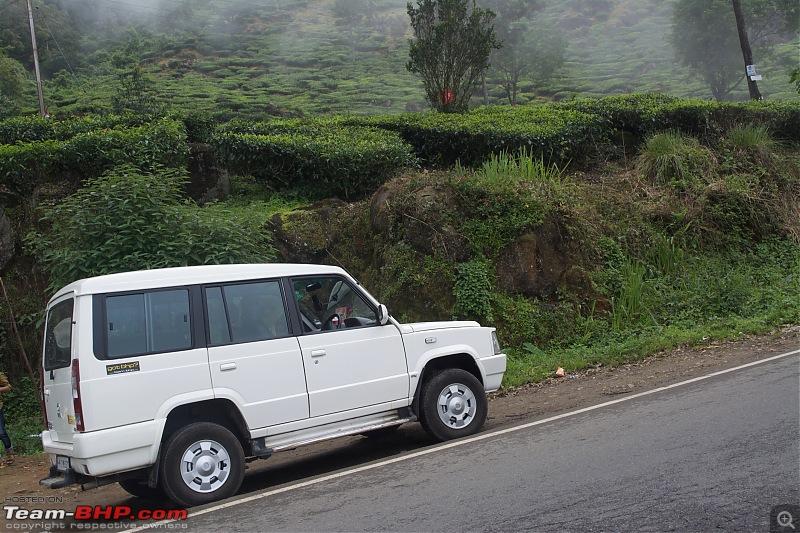 Jurassic Park: Bangalore - Munnar - Marayur - Valparai - Chalakudy - Thrissur in a Tata Sumo-dsc_0016.jpeg