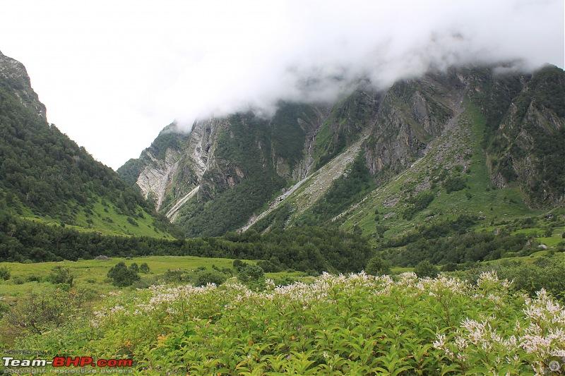 Trek to the Valley of Flowers-img_6035b.jpg
