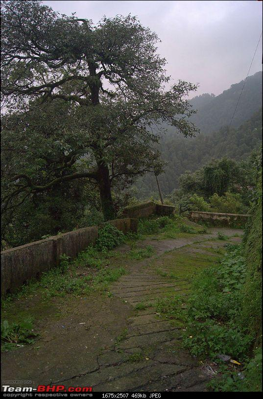 Hawk-On-Fours® (H-4®) Roadtrip: Reluctantly to Mussoorie (Landour)-m9-11.jpg