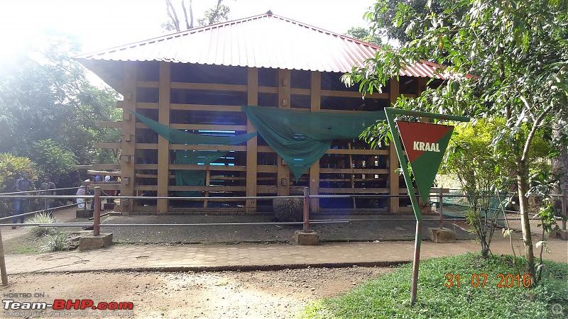 A visit to the Elephant Shelter & Rehabilitation Center in Konni, Kerala-dsc01490.jpg