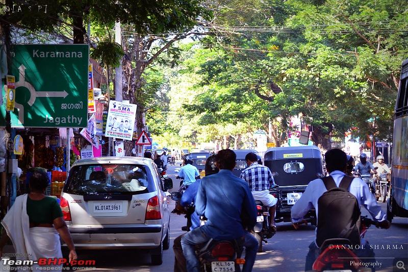 Tour de Kerala: A 5-day holiday-dsc_2930.jpg
