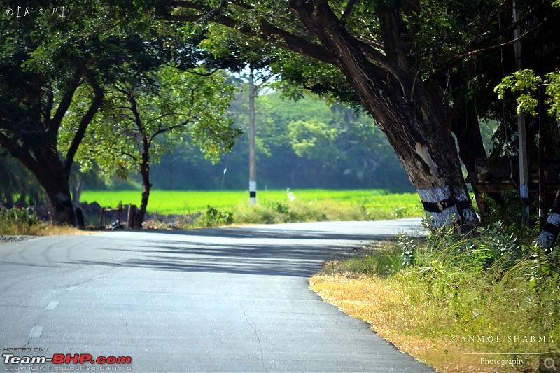 Tour de Kerala: A 5-day holiday-dsc_3274.jpg