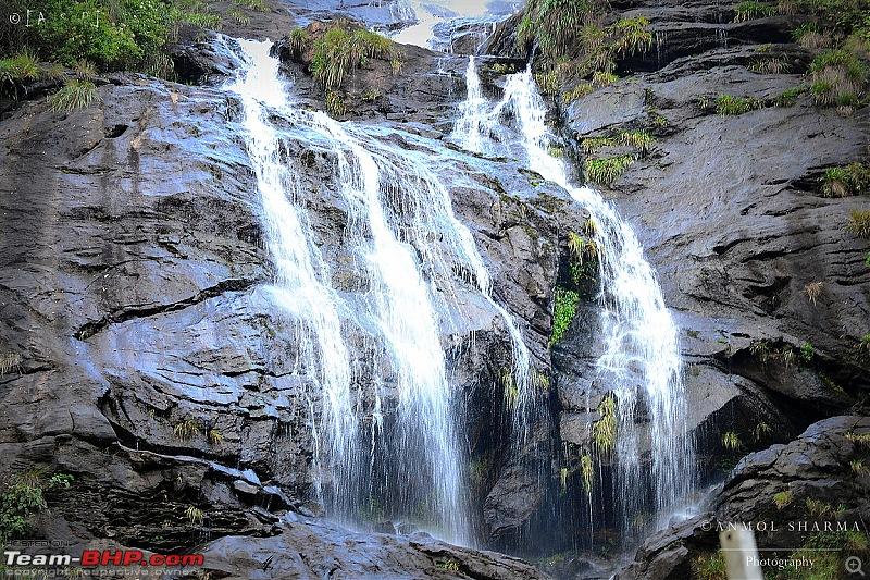Tour de Kerala: A 5-day holiday-dsc_3798.jpg