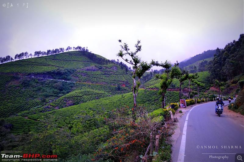 Tour de Kerala: A 5-day holiday-dsc_3816.jpg