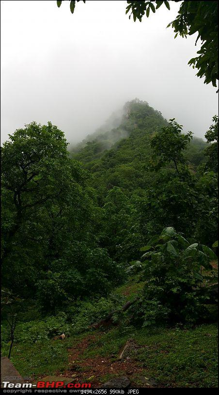 Polo forest, Gujarat: A Janmashtami in the rains-46.jpg