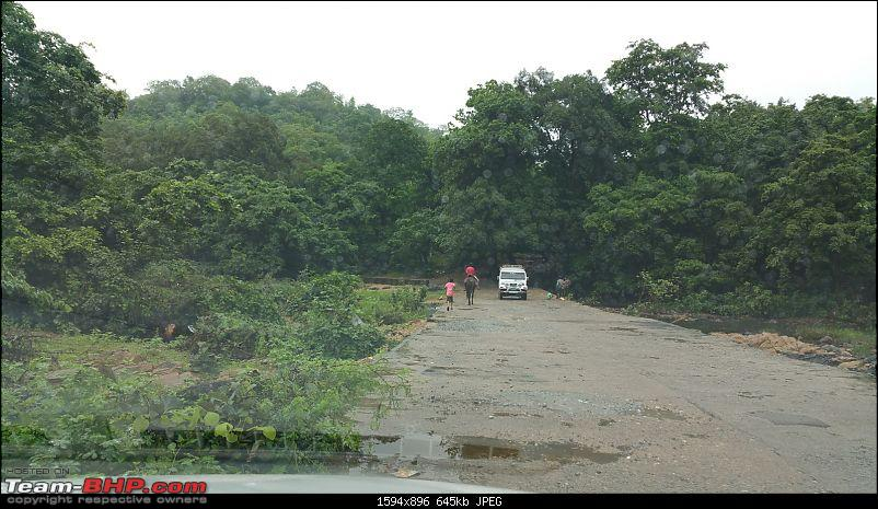 Polo forest, Gujarat: A Janmashtami in the rains-55.jpg