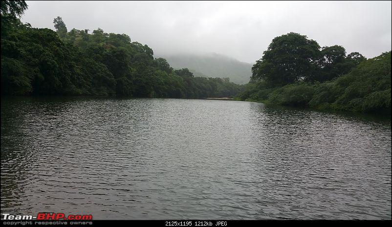 Polo forest, Gujarat: A Janmashtami in the rains-65.jpg