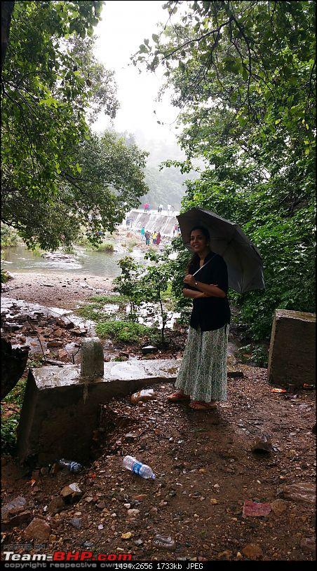 Polo forest, Gujarat: A Janmashtami in the rains-75.jpg