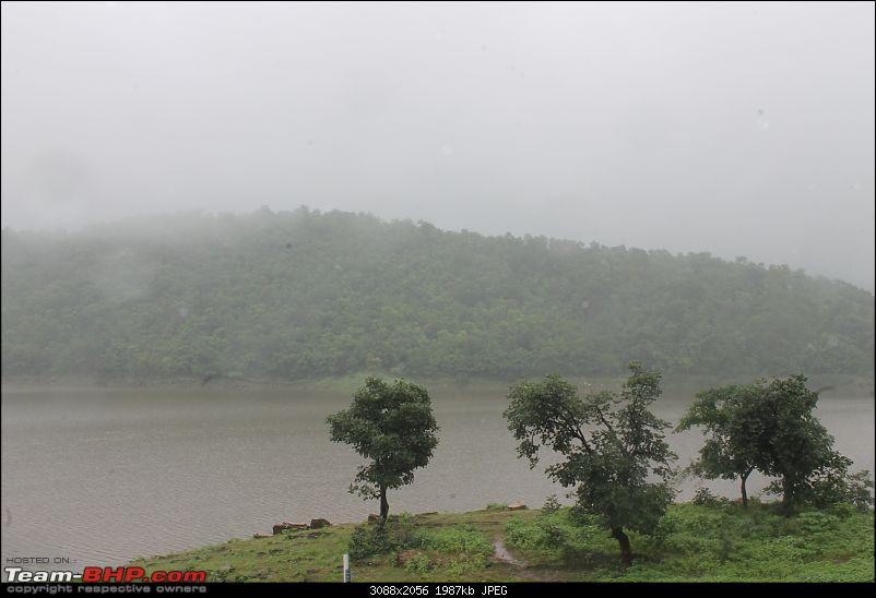 Polo forest, Gujarat: A Janmashtami in the rains-78.jpg